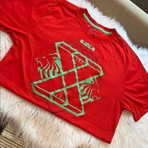 NIKE DriFit Lebron James Lion Shirt Small